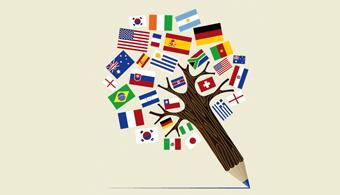 lenguas y traducción profesional en nova extranjería